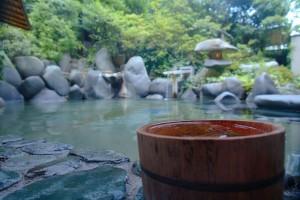 Ryokan Onsen in Tamatsukuri, Japanese hot spring