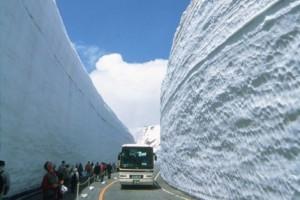snow corridor on Japan's Alpine Route
