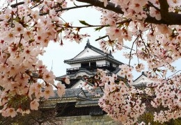 Japan: A Travel Guide to Japan for First Time Visitors