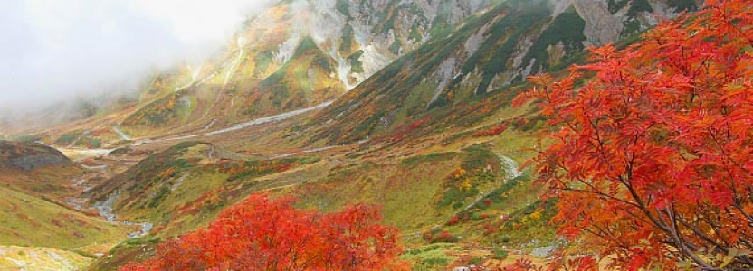 The Japan Alpine Route – Natural and Man-Made Wonders