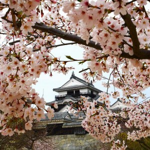 Matsuyama Castle Japan tours