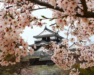 Matsuyama Castle Japan tours from our Japan travel guide