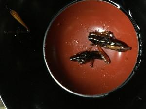 Yummy Crickets