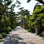 Touring the Gardens of Kyoto